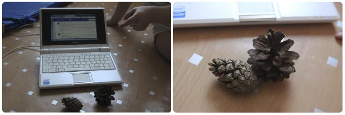 игры с природным материалом для дошкольников