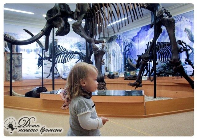 на выставке музея Окно в природу