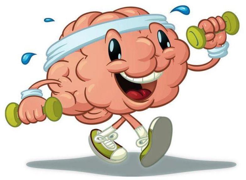 Гимнастика мозга на каждый день