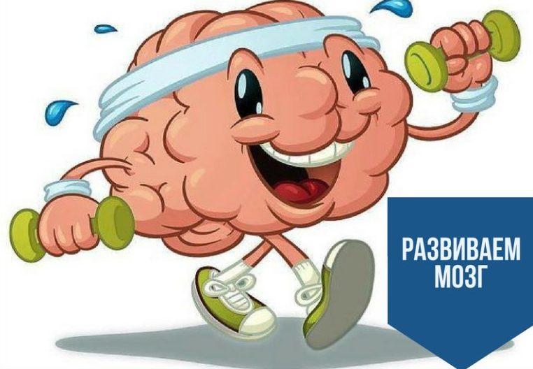 Развитие мозга гимнастикой