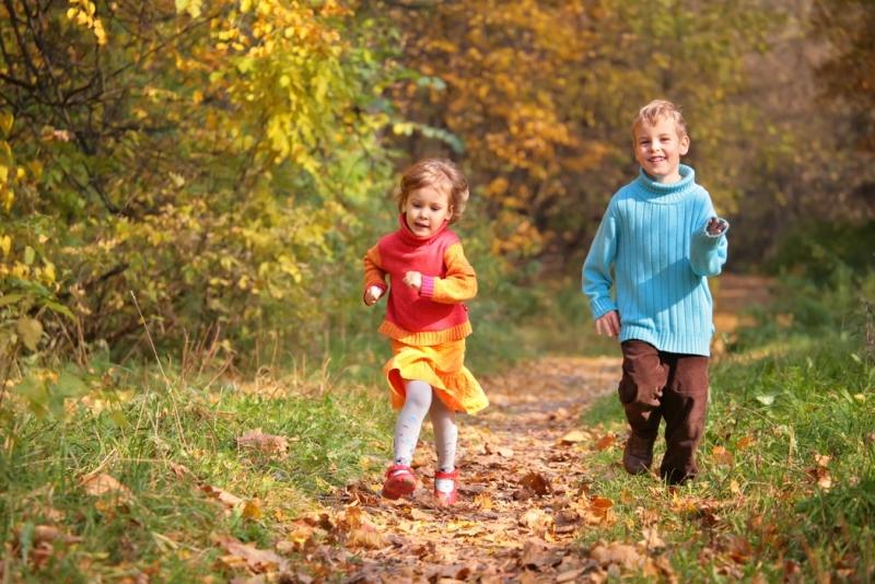 дети бегут через лес