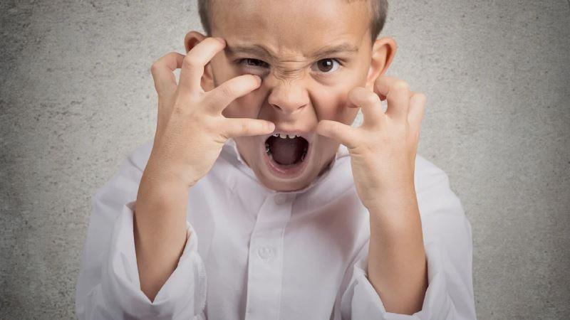 Есть ли польза в детской агрессии