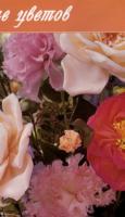 Хелен Гибб — Изысканные цветы из лент